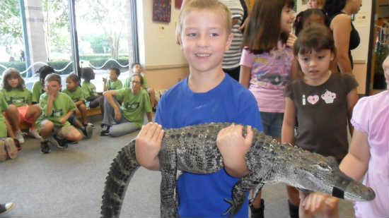 Carol's son Matt holds a baby gator.