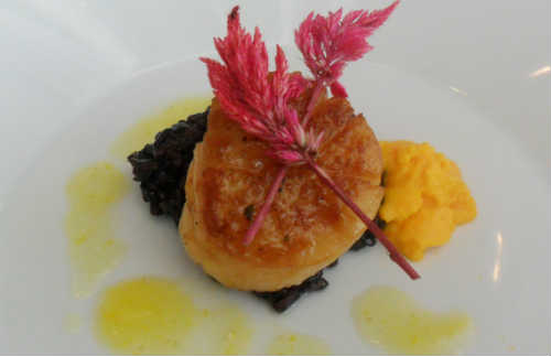 Lotus - seared scallop