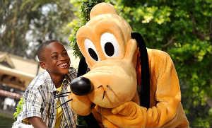 Walt Disney World Dog Days of Summer