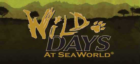 Wild Days weekends at SeaWorld Orlando