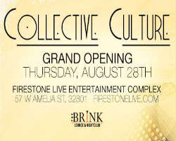 Collective Culture Local Music Showcase Grand Opening at The Brink Lounge