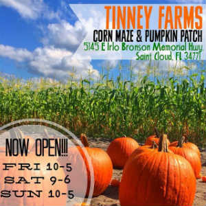 Tinney Farms Corn Maze Pumpkin Patch, and Fall Festival