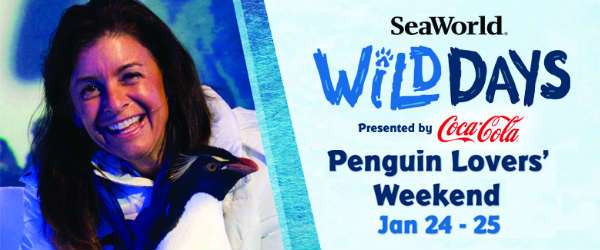 SeaWorld Orlando Kicks Off Wild Days with Julie Scardina and Penguin Lovers' Weekend January 24-25