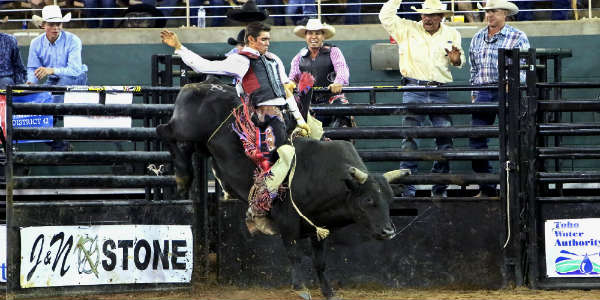 Silver Spurs Rodeo bull riding