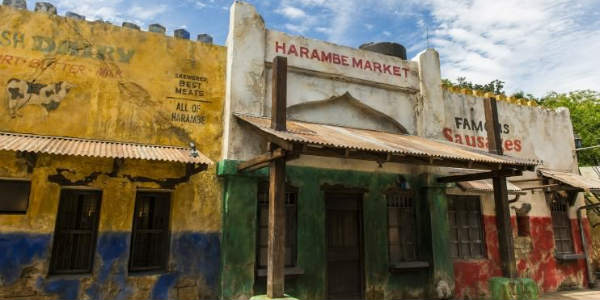 Harambe Market at Disney's Animal Kingdom