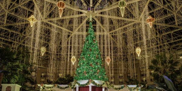 Christmas At Gaylord Palms To Include Ice Cirque Dreams