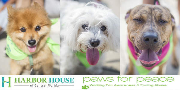 Harbor House of Central Florida Hosts 6th Annual Paws for Peace Walk