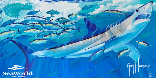 Guy Harvey shark mural for SeaWorld