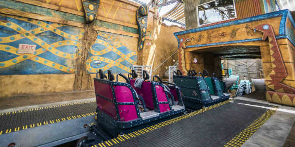 Cobra's Curse at Busch Gardens Tampa Bay