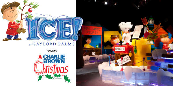 It's Going to Be A Charlie Brown Christmas at Gaylord Palms