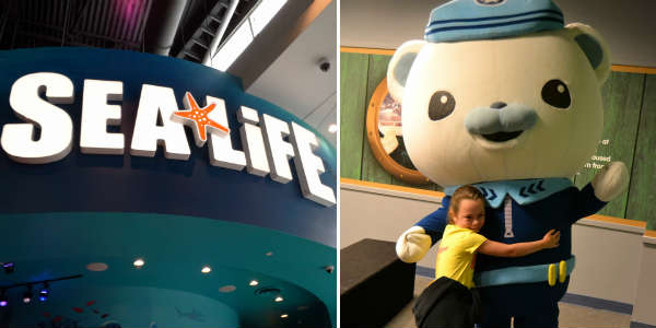 The Octonauts at SEA LIFE Orlando Aquarium