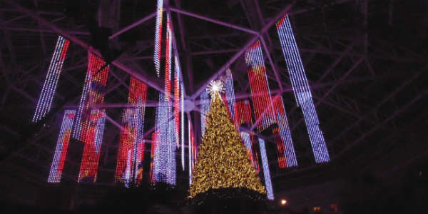 Out and About: Christmas at Gaylord Palms is Great Family Fun - Cirque Dreams Unwrapped