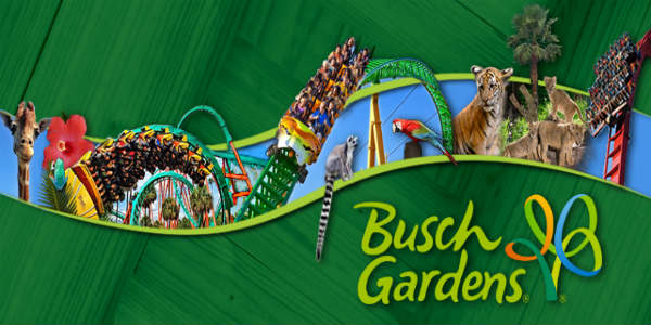 Busch Gardens Tampa Offers BOGO Fun Card Deal and Free Preschool ...