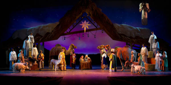 SeaWorld Orlando announces an all-new event, Three Kings Celebration
