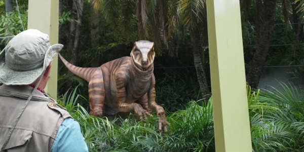 the Raptor Encounter at Universal's Islands of Adventure