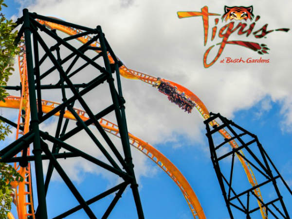 Busch Gardens Tampa has announced it will open Florida's tallest launch coaster in spring 2019, and we have all the details.