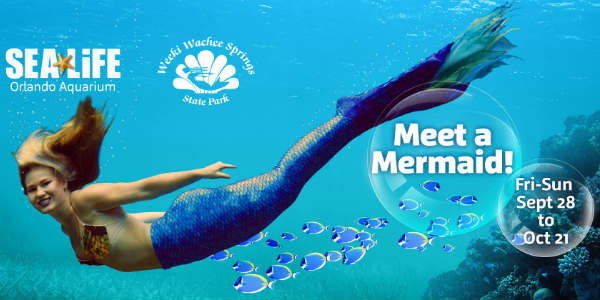 SEA LIFE Orlando welcomes the world-famous Mermaids of Weeki Wachee Springs State Park to its aquatic wonderland weekends through Oct 21, 2018.