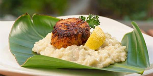 Seven Seas Food Festivalat SeaWorld Orlando