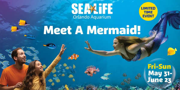 Mermaids are returning to SEA LIFE Orlando for a limited time this summer