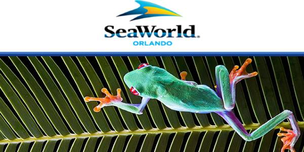 SeaWorld Parks Provide Free Online Animal and Nature Classroom Resources