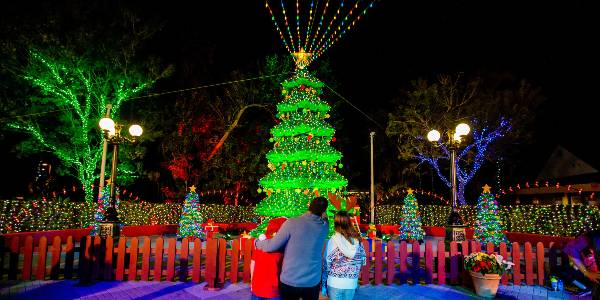 Holidays at LEGOLAND Florida - LEGO tree