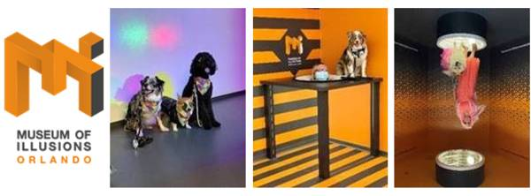 Museum of Illusions Orlando to Host Puppy Paw-ty
